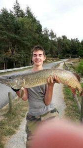 Northern Pike — Cédric Laly