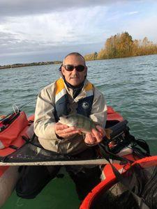 European Perch — Benoit vauchel durel
