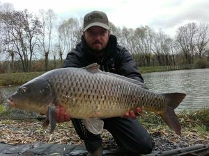 Common Carp — Laurent C