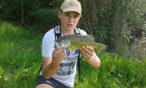 Smallmouth Bass — Yohan Grabe