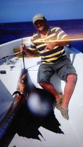 Pacific Sailfish — Laurent Cecora