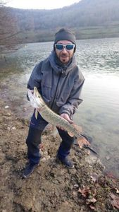 Northern Pike — Pueblo Lolo