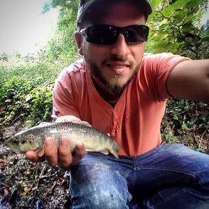 Brown Trout — Steeve Leblanc