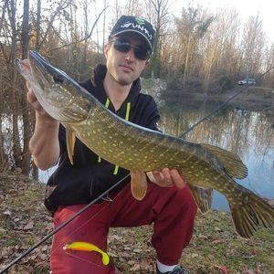 Northern Pike — Jean Malaurie