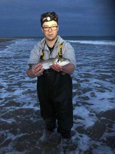 Sea bass — Adam Moloney