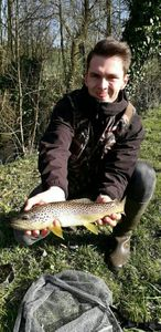 Brown Trout — Armand Rigaux