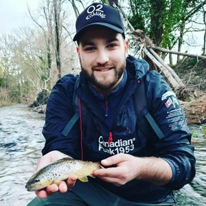 Brown Trout — Arnaud  Cambon