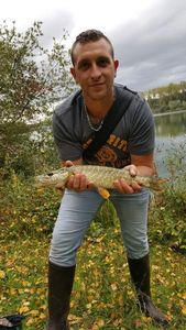 Northern Pike — Benoît  Dairaine