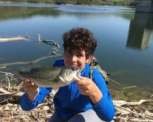 Largemouth Bass — Samuele Letizia
