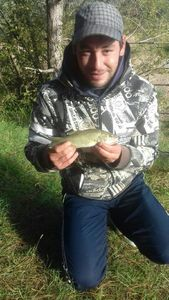 Largemouth Bass — Nicolas Hervé