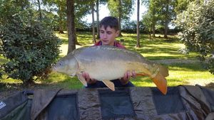 Mirror Carp — Florent Tete
