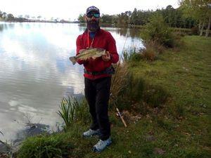 Largemouth Bass — Jérôme  Roux