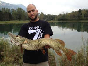 Northern Pike — Tomy Radet