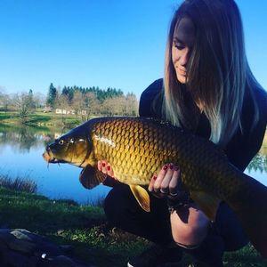Common Carp — Coralie Morelet