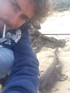 Port Jackson Shark — Blanchet Anthony