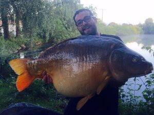 Mirror Carp — Guillaume Brunet