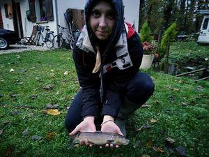 Common Trout — Émilie Jarry