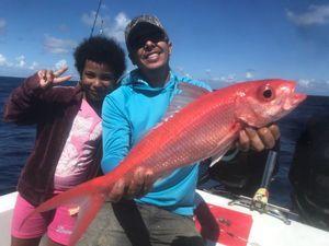 Vivaneau Oeil de boeuf — Elmondo Fishing
