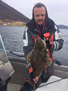 Atlantic Halibut — Kyle Morales