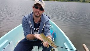 Northern Pike — William Painset