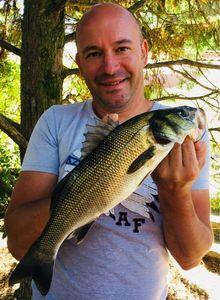 European Bass — Stephane Pogonas