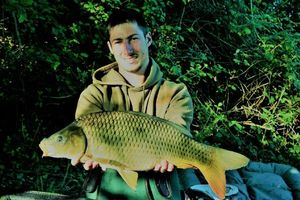 Common Carp — Elie Nashbaits