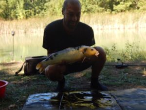 Koï Fish — Johnny Chichery