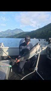 Chinook Salmon — Cédric Oldache
