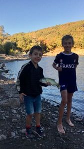 Smallmouth Bass — Pierau Sam