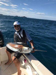 Longbill Spearfish — Chakib Abbadi