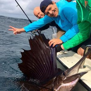 Espadon Voilier Atlantique (Sailfish) — Luis Diaz