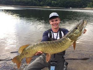 Northern Pike — Bryan Descargues