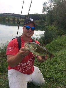 Largemouth Bass — Andy Salmeron