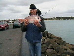 Snapper (Squirefish) — Danny Hicks