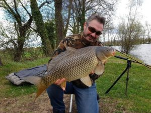 Common Carp — Jeremy Furnon
