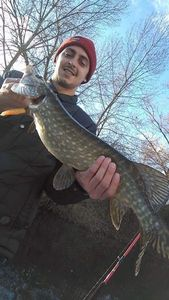 Northern Pike — Guillaume Despessailles