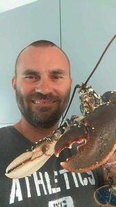 European Lobster — Julien Livet