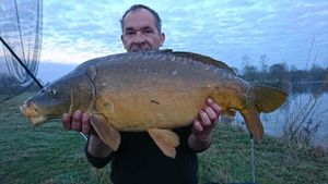 Mirror Carp — Laurent Kerson