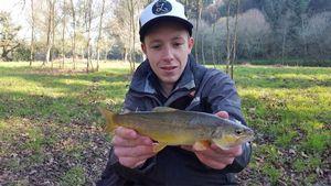 Common Trout — Mathieu Le Blanc