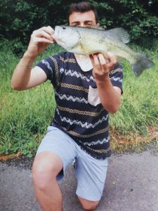 Largemouth Bass — Clement Petetin