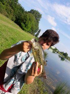 Largemouth Bass — Antoine Labatut
