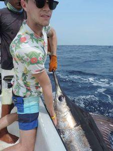 Blue Marlin (Pacific) — Alexis Braynas