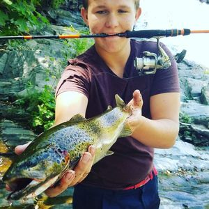 Brown Trout — Mathis Sebe