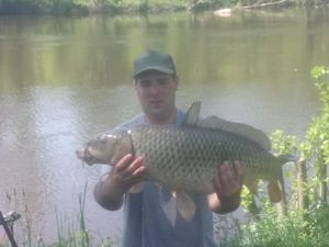 Common Carp — Dala  Laisney