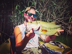 Largemouth Bass — Mattia Zanellato