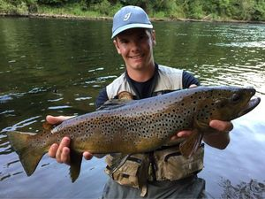 Brown Trout — Bryan Descargues