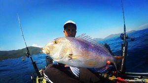 Dentex — Powpit Fishing