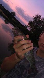 Lake Trout — Paul Vandekerckhove