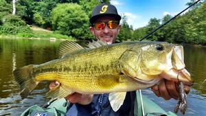 Largemouth Bass — Christophe Decours