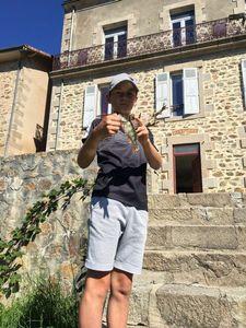 European Perch — Gregoose Peche Du31 Denis
